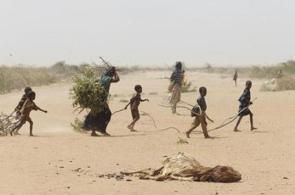oxfam-east-africa-a-family-gathers-sticks-and-branches-for-firewood_l